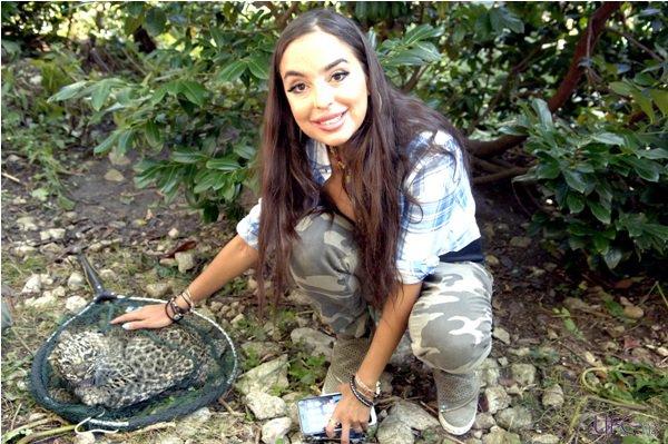 Лейла Алиева открыла в Баку центр ухода за бездомными животными